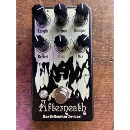 Earthquaker-AFTERNEATH V3 REVERB